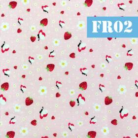 fr02 fructe capsune fluturi
