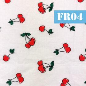 fr04 ffructe cirese fundal alb