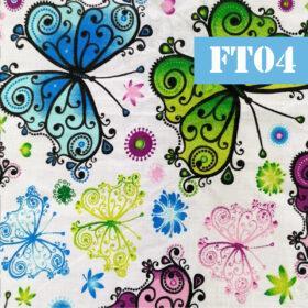 ft04 fluturi artistici