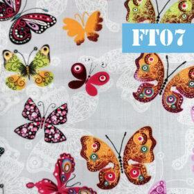 ft07 fluturi multi colori