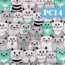 pc14 pisici gri si verde