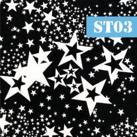 st03 stelute albe fundal negru